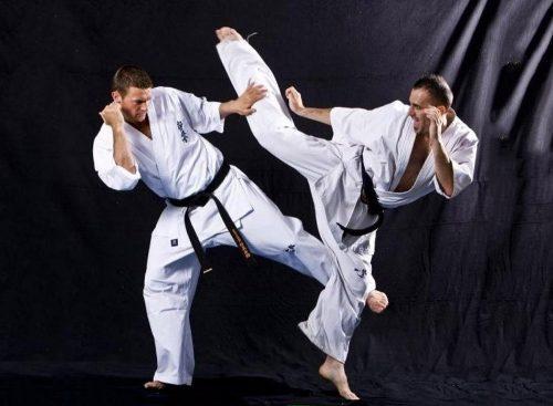 karate treeningud tamsalus