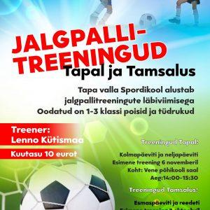 jalgpallitreeningud
