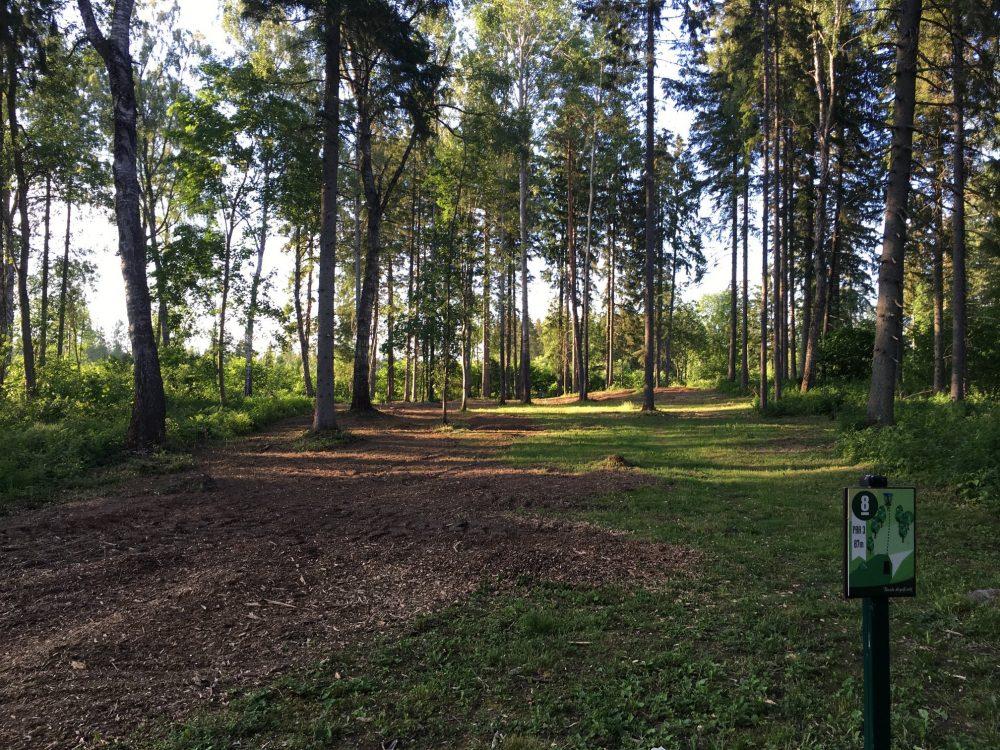 Tamsalu dsicgolfi park